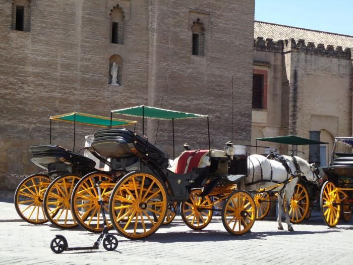 Který kočár v Seville byste si vybrali Vy