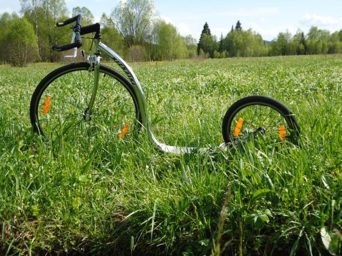Kickbike pana Huba zaparkovaný v šumavských lukách
